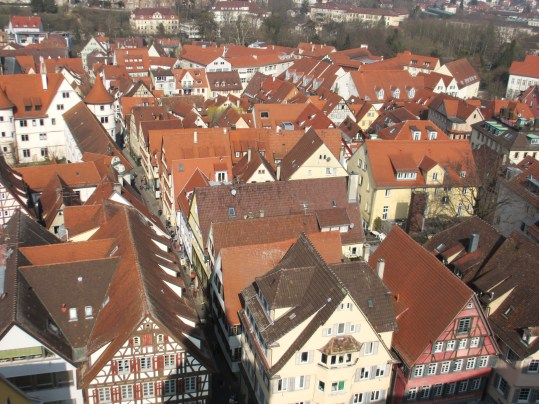 Red roofs as seen from the belfry
