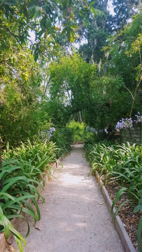 Lovely meandering paths