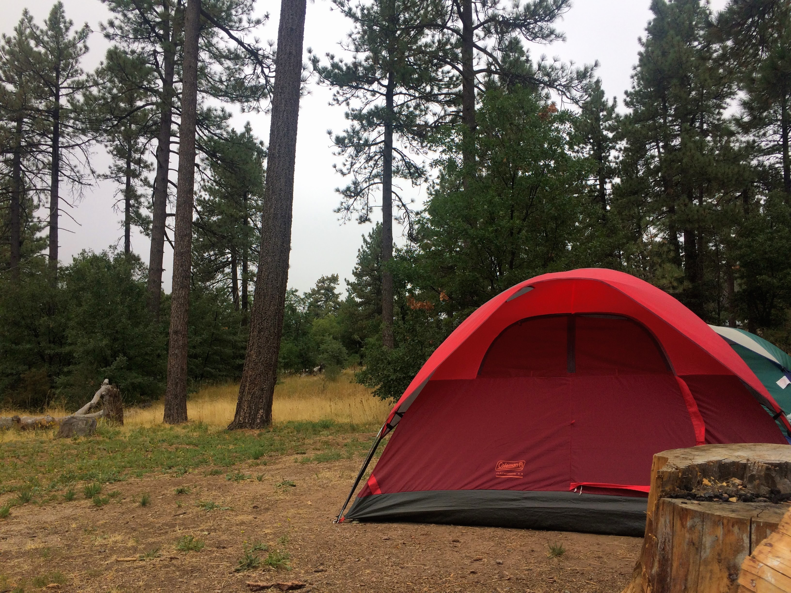 Summer Camping Series: Mount Laguna