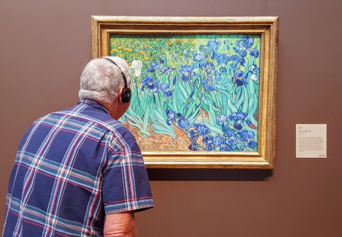 "Viewing ""Irises"""